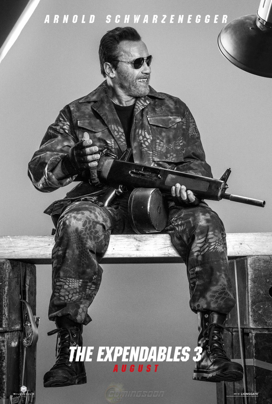 the expendables 3 arnold poster