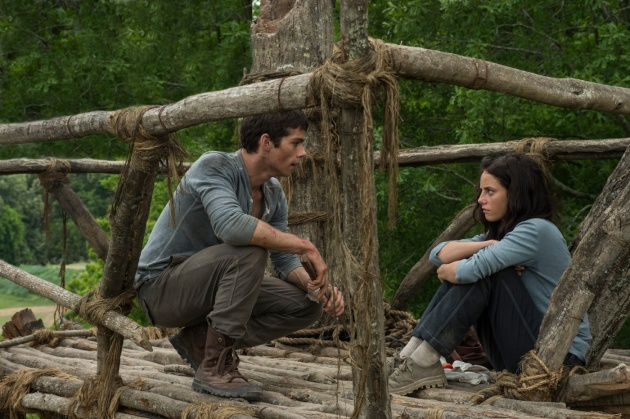 the maze runner image 06