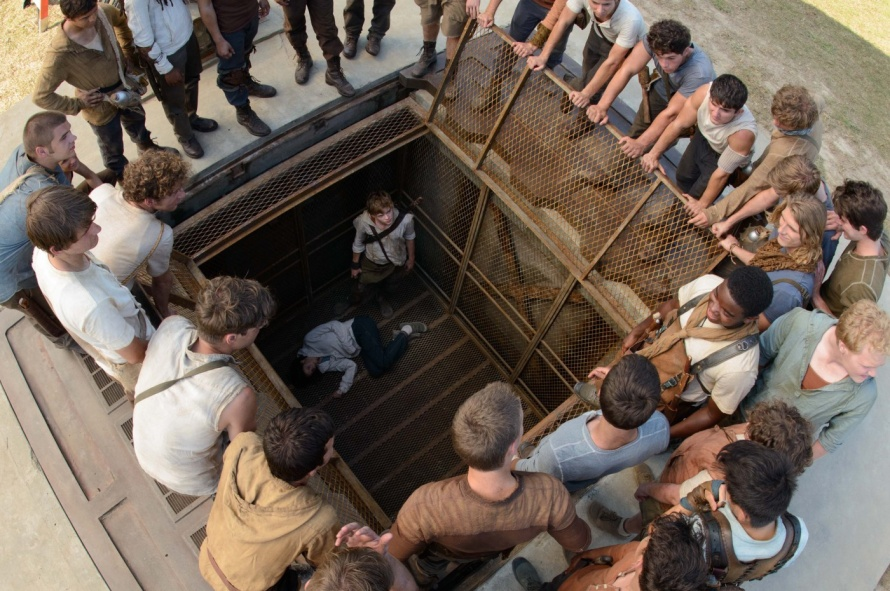 the maze runner image 07