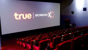 true screen x image 02
