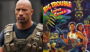 the rock big trouble