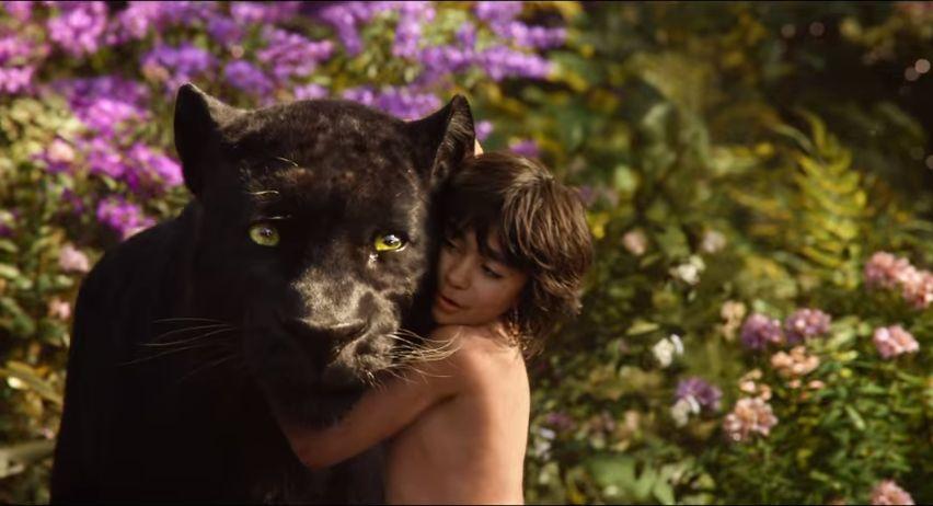 ดูเหล่าสัตว์จำนรรจาในตัวอย่างฉบับเต็มน่าตื่นตาของ The Jungle Book  เมาคลีลูกหมาป่า | JEDIYUTH