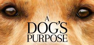 dog's purpose header