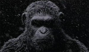 war-for-the-planet-of-the-apes-tease