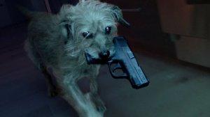 dog-wick