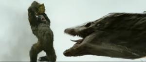 kong-vs-skull-crawler